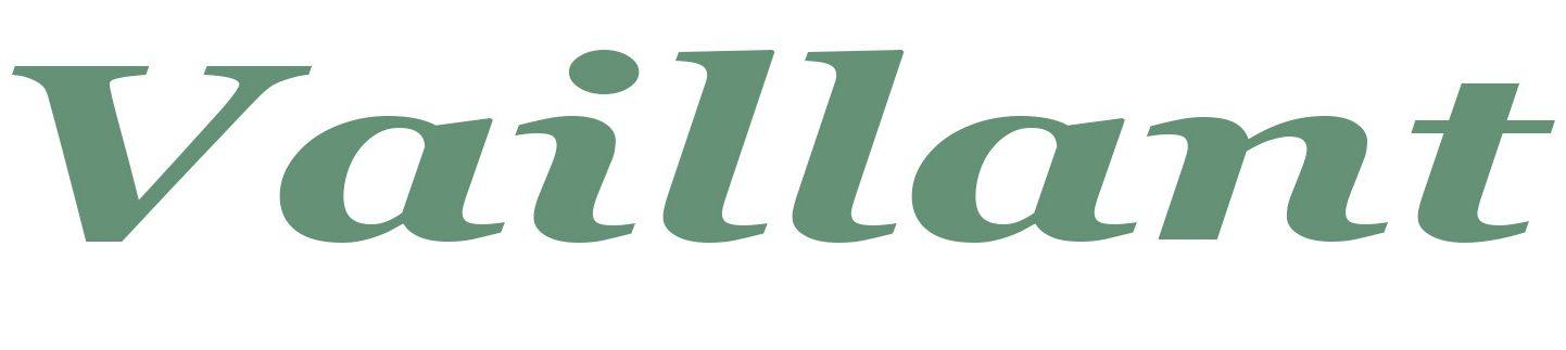 Servicio Tecnico Especializado Vaillant - Reparación Calderas